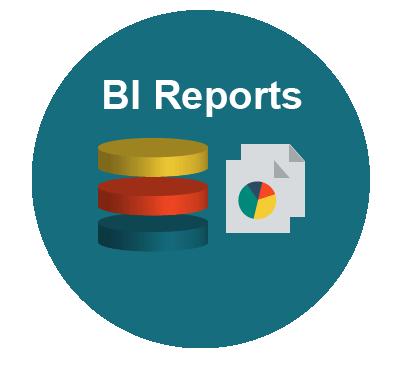Execute BI Reports